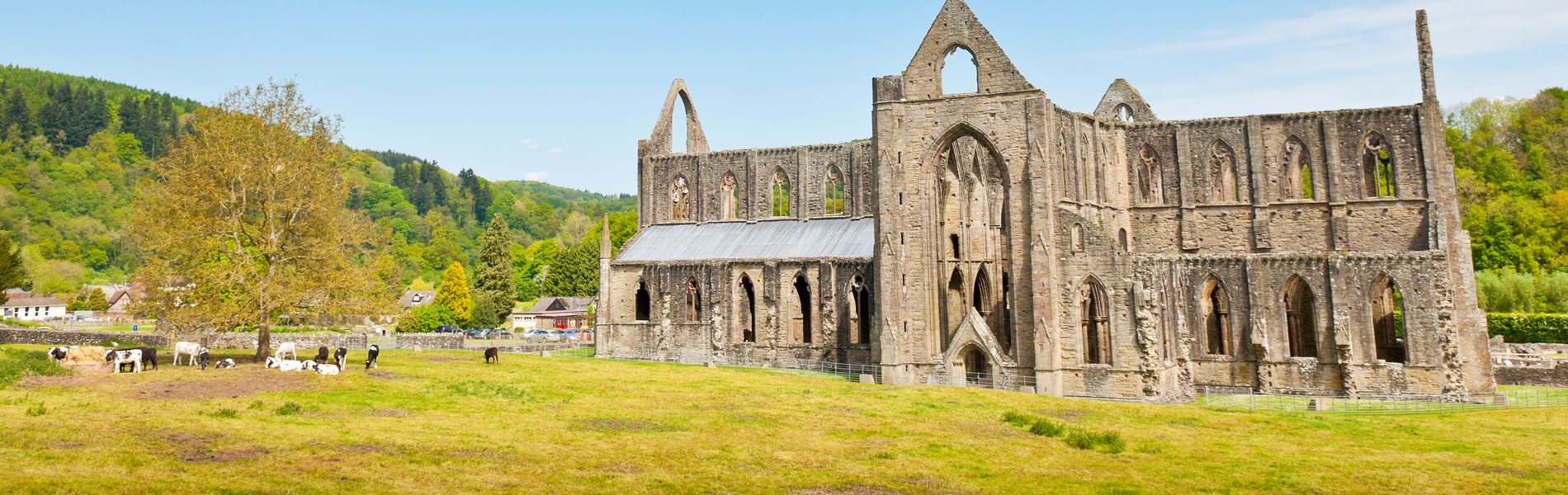 Tintern Abbey (Ancient Ruins).jpg
